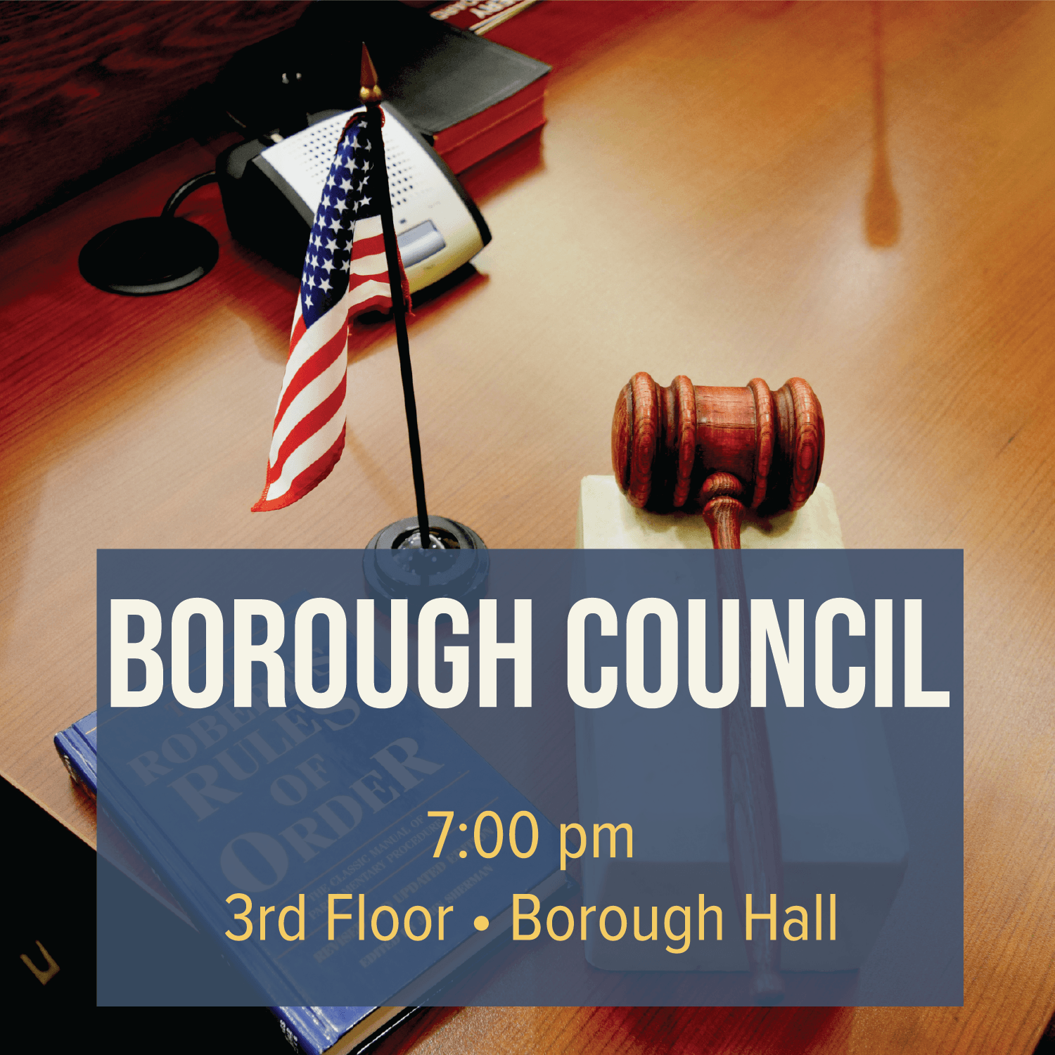 Borough Council Meeting