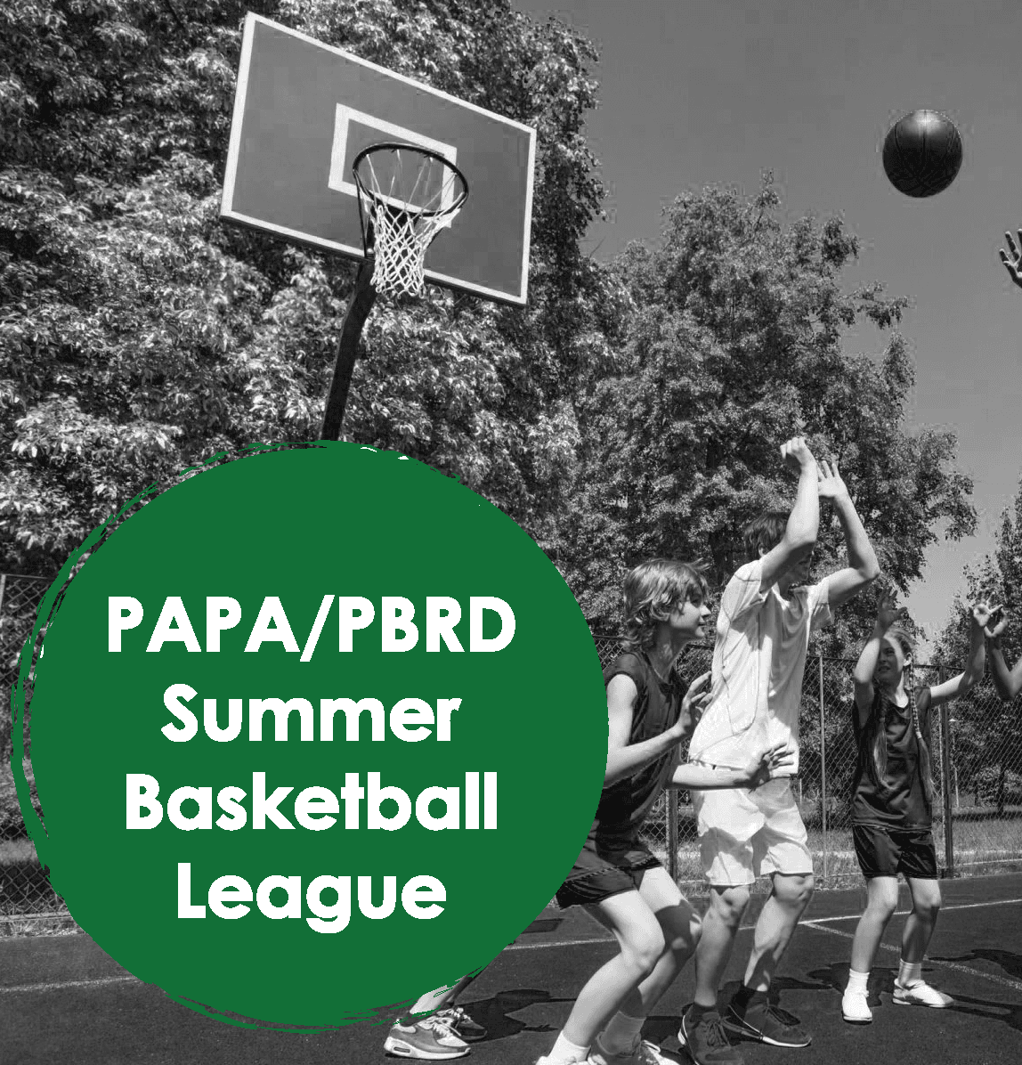 papa pbrd basketball league